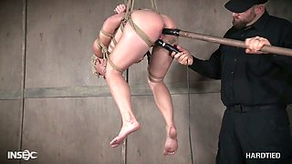 Suspended whore Helena Locke gets her pussy and anus punished