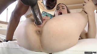 Nothing pleases a young brunette girl like a big black cock