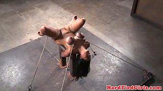 big tit asian bdsm sub hog tied by black dom