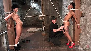 tight black slaves mia austin and nikki darling are punished